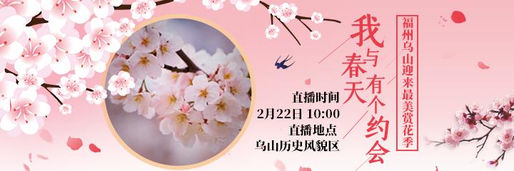现场直播:乌山樱花迎来全盛期 繁花似锦初现春意