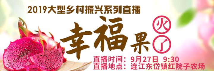 """现场直播:福州这个镇的火龙果大丰收 国庆来这里""""火""""一把!"""