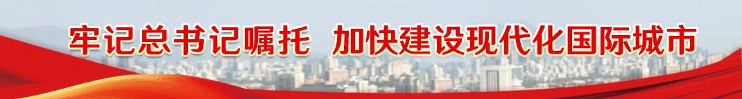 牢記總書記囑托  加快建設現代化國際城市