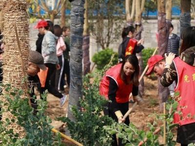 马尾志愿者义务植树500多株 为马尾添新绿