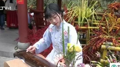 花朝节:游园赏花 拥抱春天