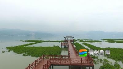 福州:饮水思源 决不能忘了老区人民