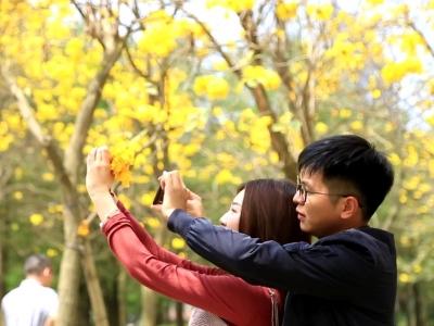 【视频】草长莺飞春意暖 正是踏青好时节