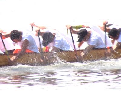龙舟赛开桨在即!这支队伍不一般,八成队员是零零后