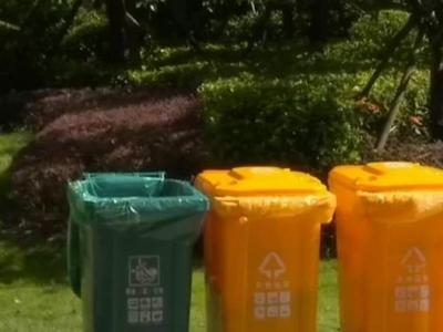 生活垃圾定时定点投放 提升垃圾分类准确率