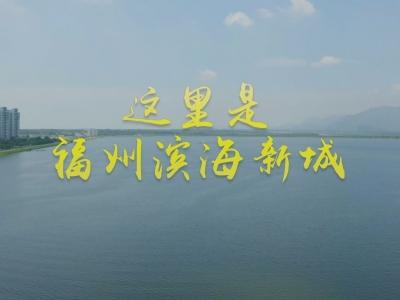 60秒带您感受滨海新城发展脉动