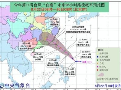 """11号台风""""白鹿""""逼近!福州未来的天气是......"""