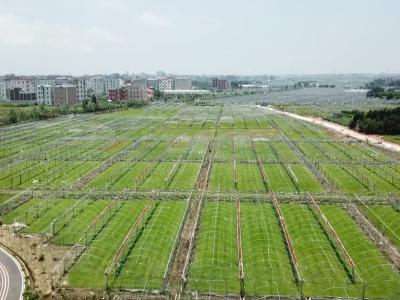 福清南宵村:农文旅融合 助力乡村振兴