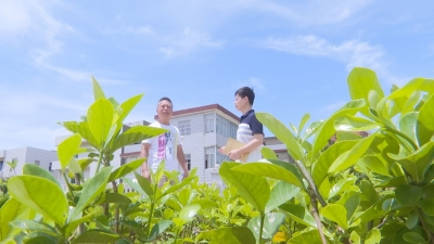 北盛村:实际行动建设美丽乡村