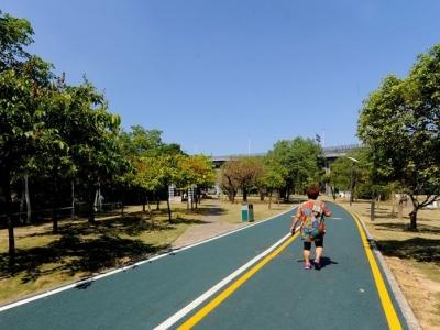 闽江公园改造有啥进展、亮点?