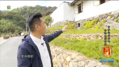 关注丨守护绿水青山 打造美好家园