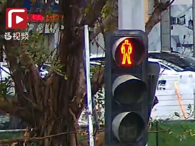 """""""红灯行""""被实名曝光!莫把交通规则当儿戏"""