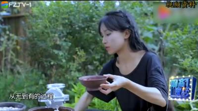 """聊斋夜话丨另类网红""""田园诗女主角""""李子柒"""