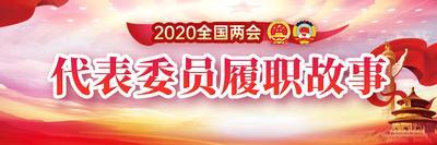 2020全国两会  代表委员履职故事