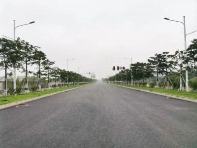 滨海新城两个道路项目最新进展来了