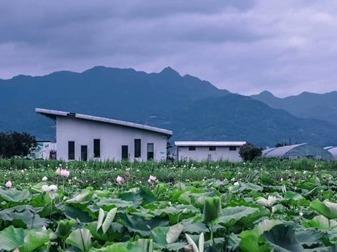 长乐猴屿利用生态优势发展休闲旅游观光农业