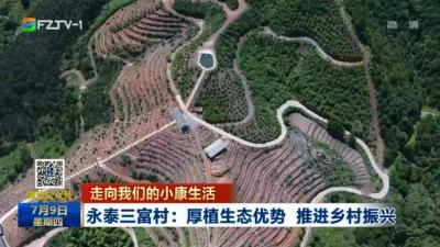 永泰三富村:厚植生态优势 推进乡村振兴