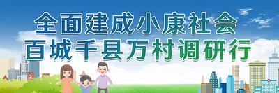 全面建成小康社会百城千县万村调研行