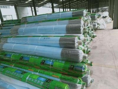福清将建成全球最大塑料薄膜智能制造生产基地
