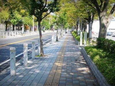 福州入选拟命名创建全国无障碍环境示范市县村镇名单