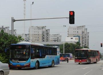 16日起,福州81路、66路公交车恢复原线路行驶