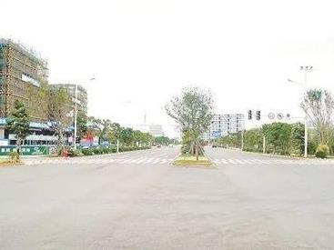好消息!滨海新城主干道金滨路完成改造
