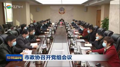 市政协召开党组会议