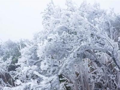 福州高海拔地区今日最低温-5℃ 寒潮将持续至13日