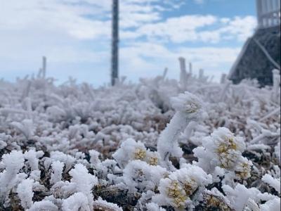 福州迎来新年首场降雪 明天最低温或降至1℃